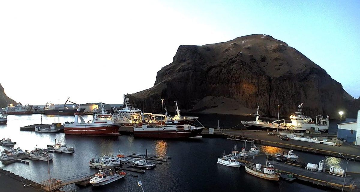 Live video from Westman Islands / Vestmannaeyjar boat tours